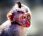 Аватар пользователя nadyushkamel