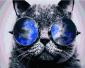 Аватар пользователя Suerterina